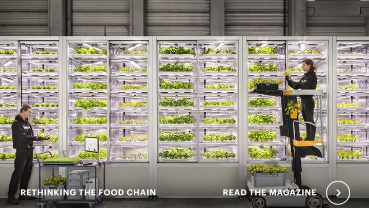 New magazine: Rethinking the food chain