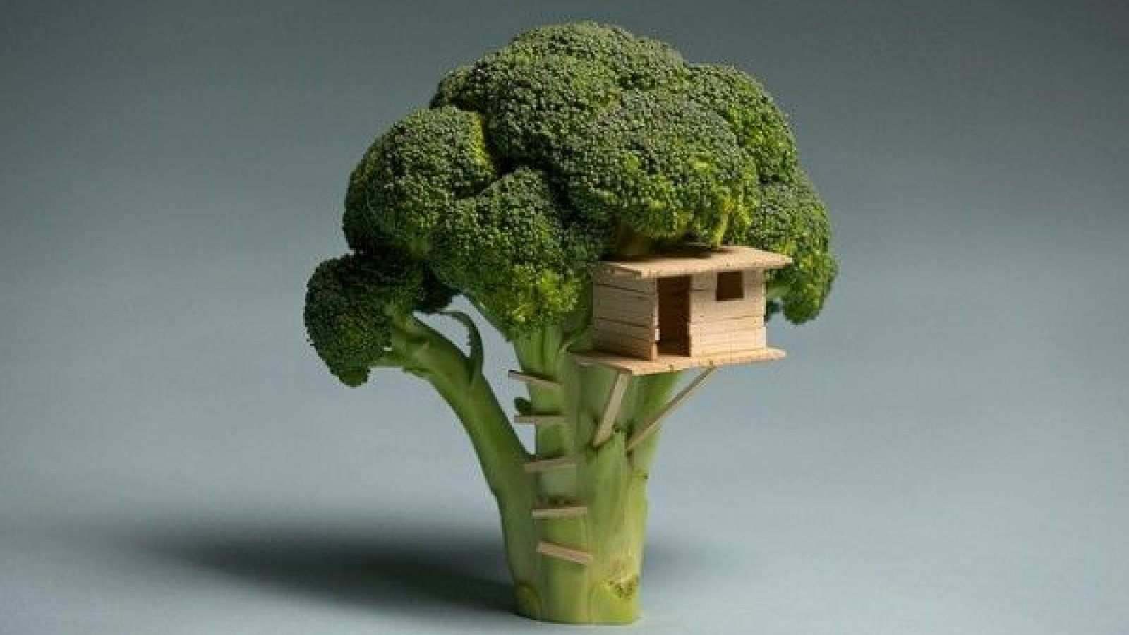 Big Bang Broccoli